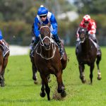 Value winners hard to find on Golden Slipper Day