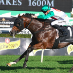 Castelvecchio storms to victory in Group 1 Randwick mile