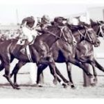 Place betting for long-term profit in horse racing