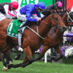 Preview of the All Aged Stakes meeting at Randwick