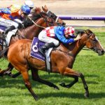 How to win betting on longshots in horse racing