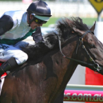 So Si Bon ready for G1 glory in the Sir Rupert Clarke Stakes