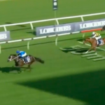 How to bet on favourites in horse racing